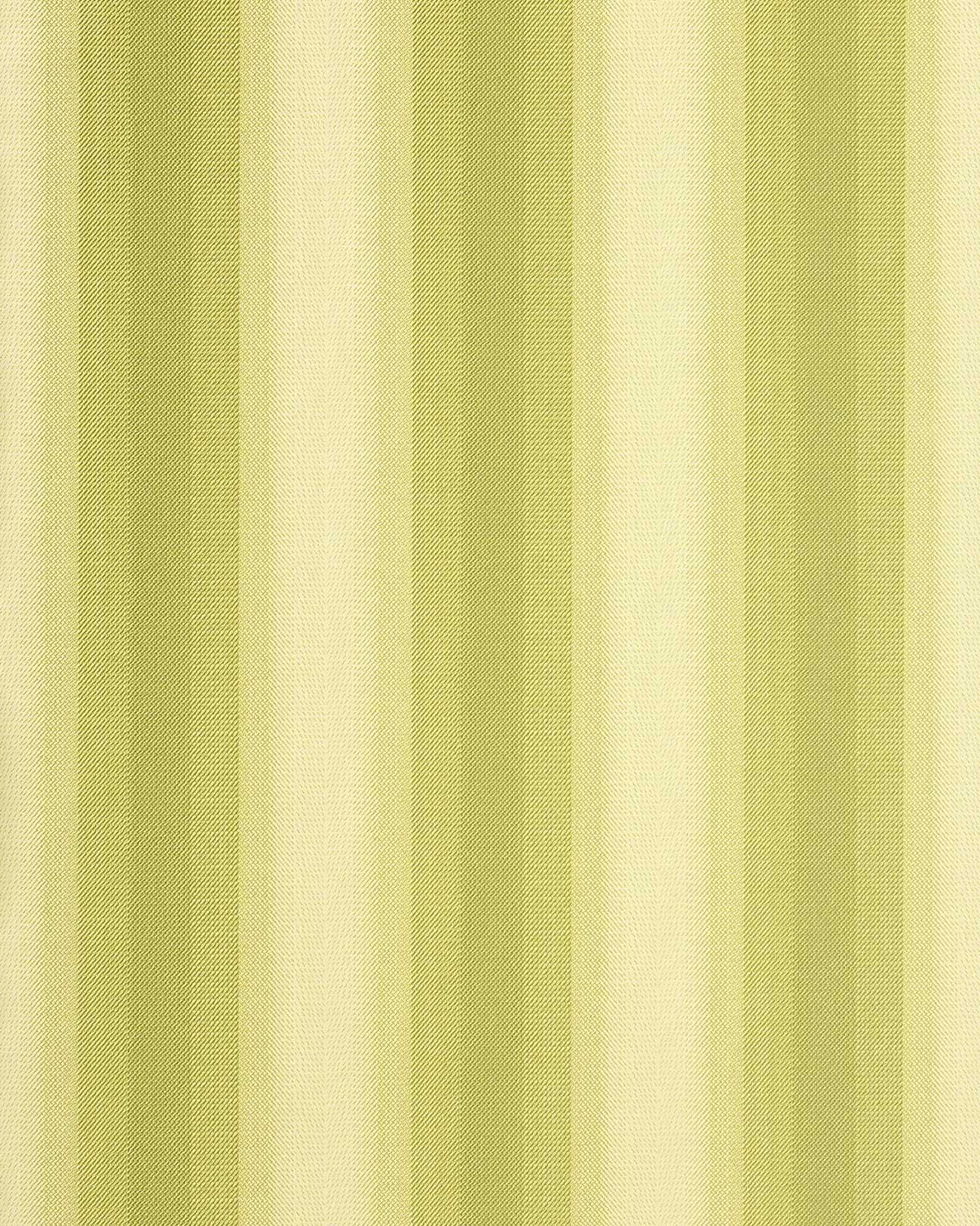 Carta da parati vinilica edem 085 25 a strisce larghe for Carta parati verde